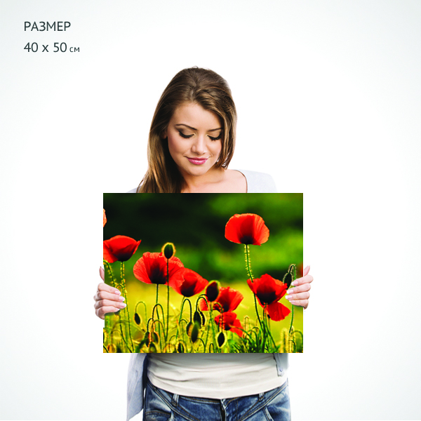 "изображение картина на холсте ""алые маки"" 40х50 см от интернет-магазина Decoretto. Фото N2"